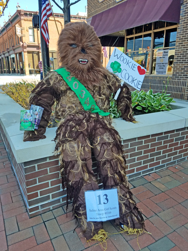 Chewbacca by Saline Area Girl Scouts Troop 40346